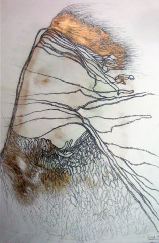 12_Fred Deux, Sans titre, 2012, mine de plomb, encre et peinture dorée sur papier, 65,5 x 40,5 cm