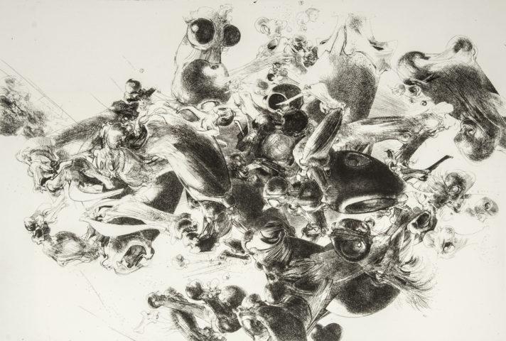 12_Struggle for life, gravure, 39 x 59,5 cm