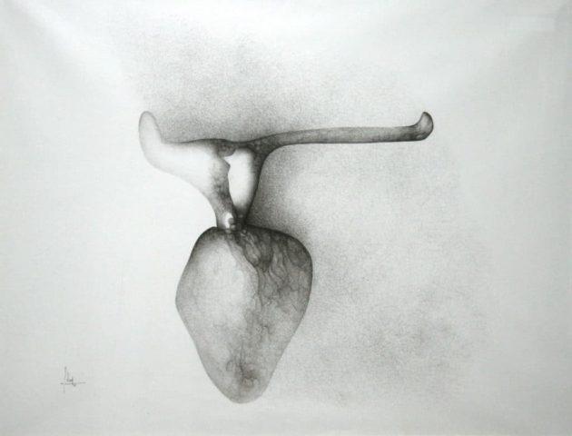 1_Fred Deux, Coeur de boeuf, 1962, encre de Chine sur papier sirius, 72 x 102 cm