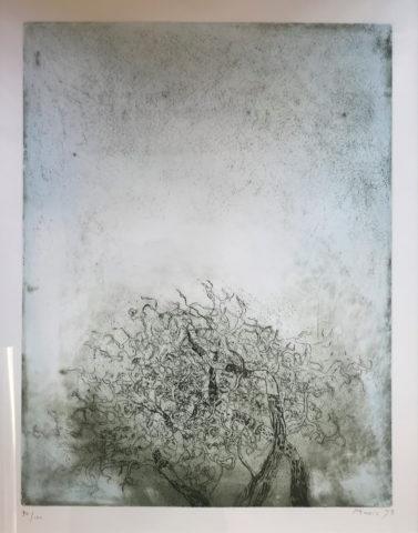 2_Zoran Music, Sans titre, 1973, gravure, 48 x 37,5 cm