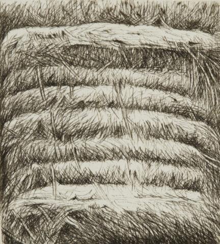 3_Foreteresse de paile, 2005, gravure, 17,4 x 22,6 cm