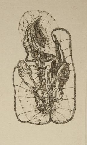 5_Chrysalide, d'après Fred Deux, 1972, gravure, 26,5 x 16 cm